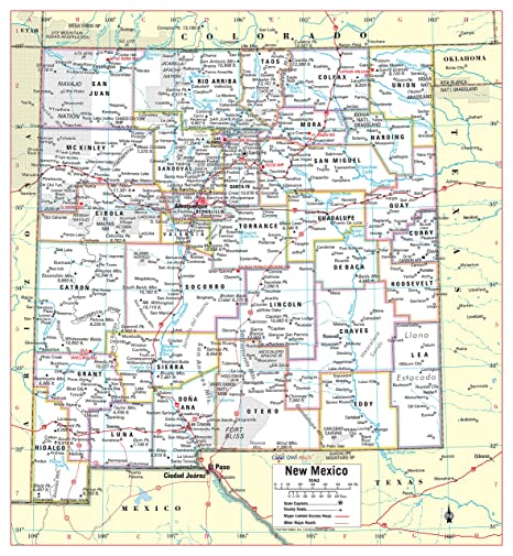 Amazon.com : Cool Owl Maps New Mexico State Wall Map Poster ...