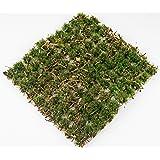 War World Scenics 10 mm gammal ek skog självhäftande statisk gräs häll x 100 – modellbana modellbygge tablettop terräng…