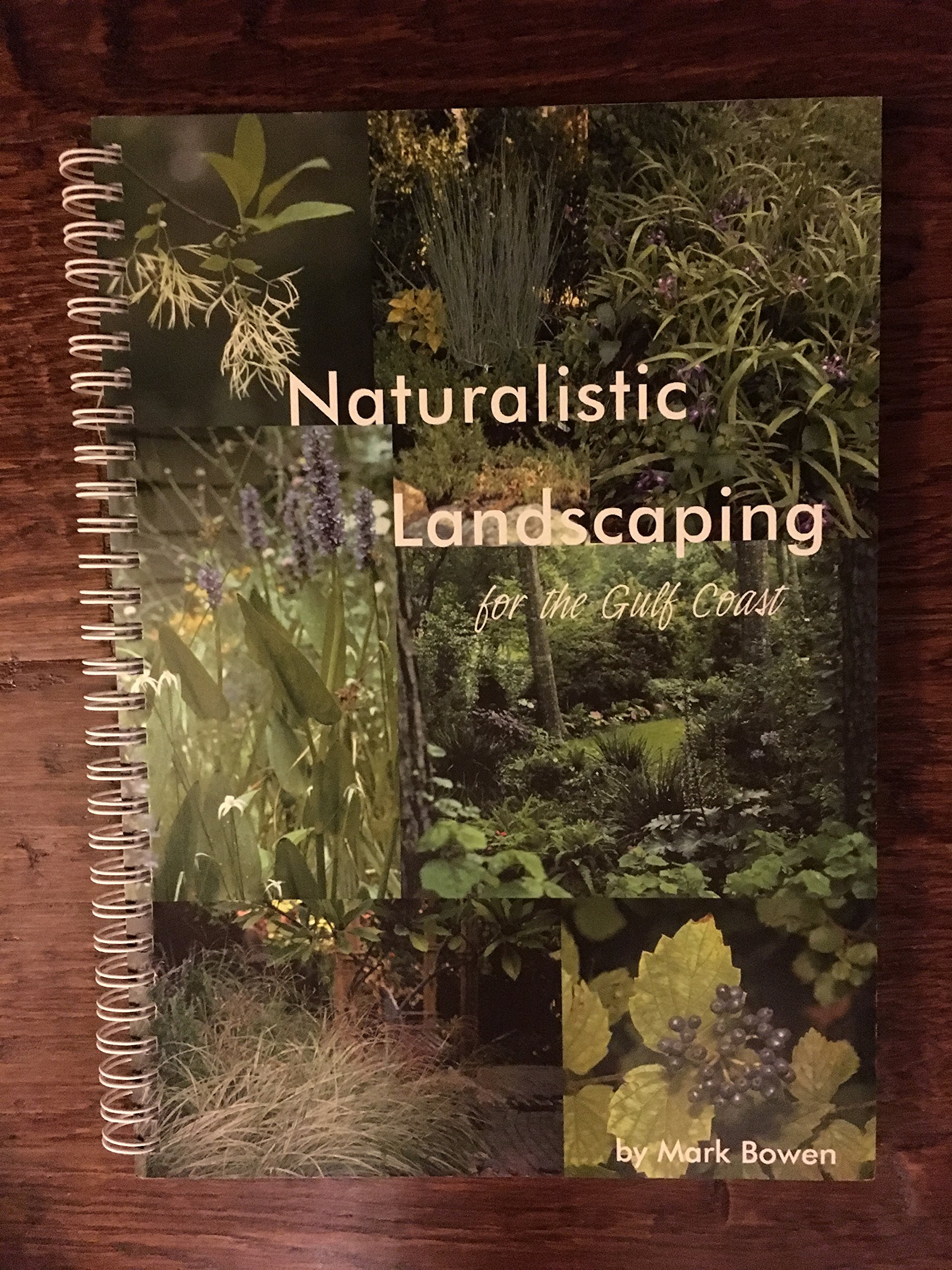 naturalistic-landscaping-for-the-gulf-coast