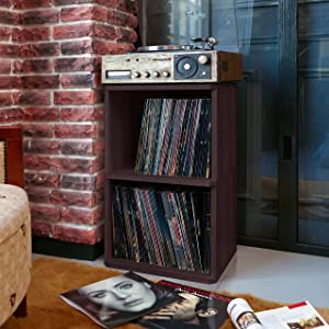 Way Basics 2-Shelf Vinyl Record Storage Cube and LP Record Album Storage Shelf, Espresso (Tool-Free Assembly and Uniquely Crafted from Sustainable Non Toxic zBoard paperboard)