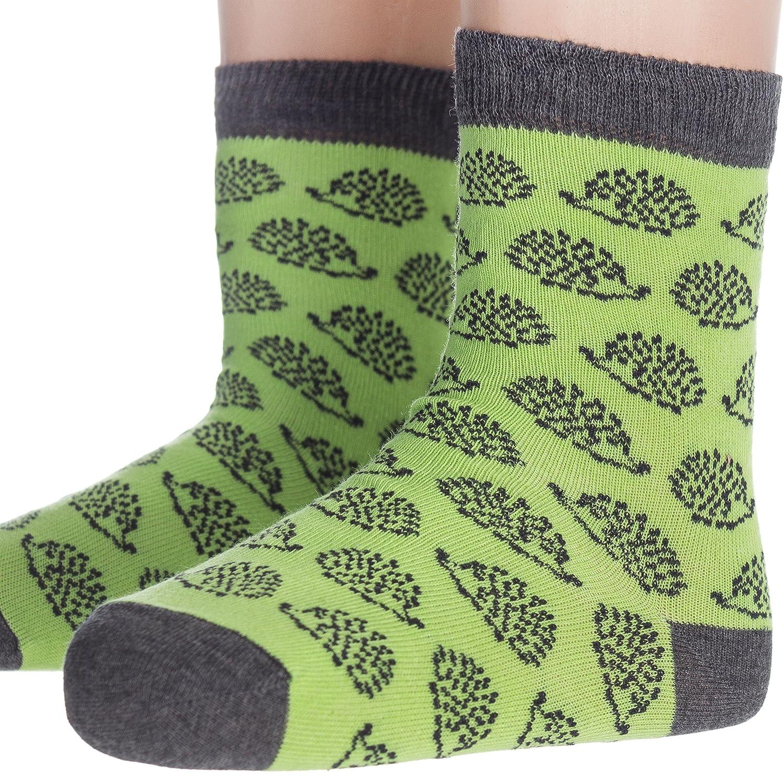 Aurora verdes algodón calcetines con erizo para niños pequeños (2 - 5 años): Amazon.es: Ropa y accesorios