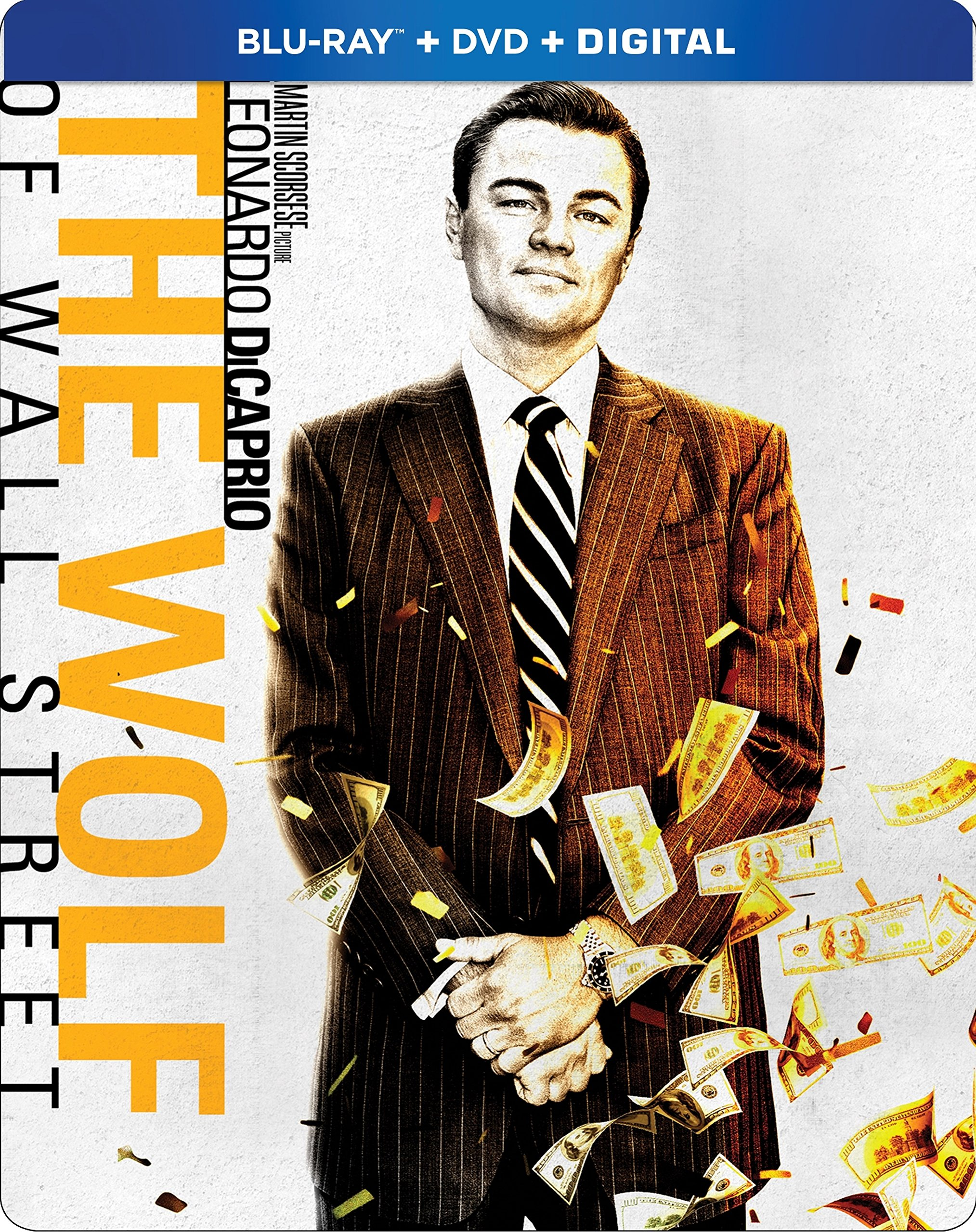 The Wolf of Wall Street (Steelbook) (Steelbook, Widescreen, 2 Pack, Amaray Case, Dubbed)
