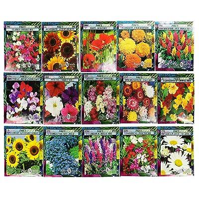 Set of 15 Black Duck Brand Heirloom Flower Seeds 15 Different Varieties Non-GMO - 2020 Last of Stock Sale! (Variety Deluxe Flower Garden) : Garden & Outdoor
