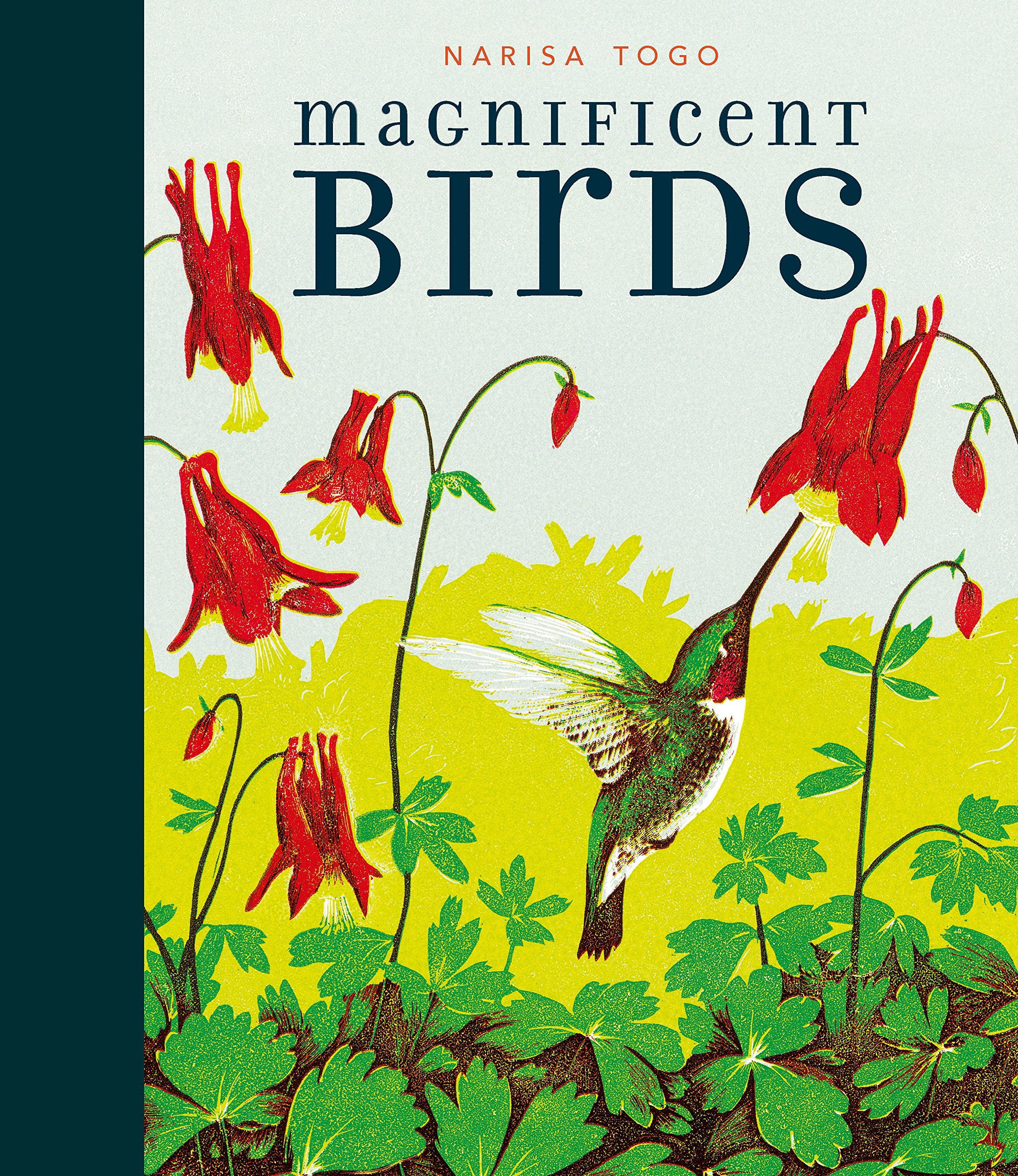Magnificent Birds Candlewick Press