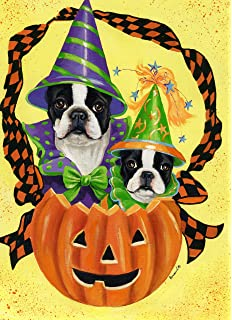 Great Boston Terrier Halloween GF