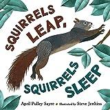 Squirrels Leap, Squirrels Sleep