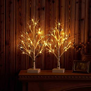 Hairui Pre-lit Tabletop Birch Tree with Timer 24LED 18IN Battery Operated for Christmas Father's Day Party Decoration 2 Sets