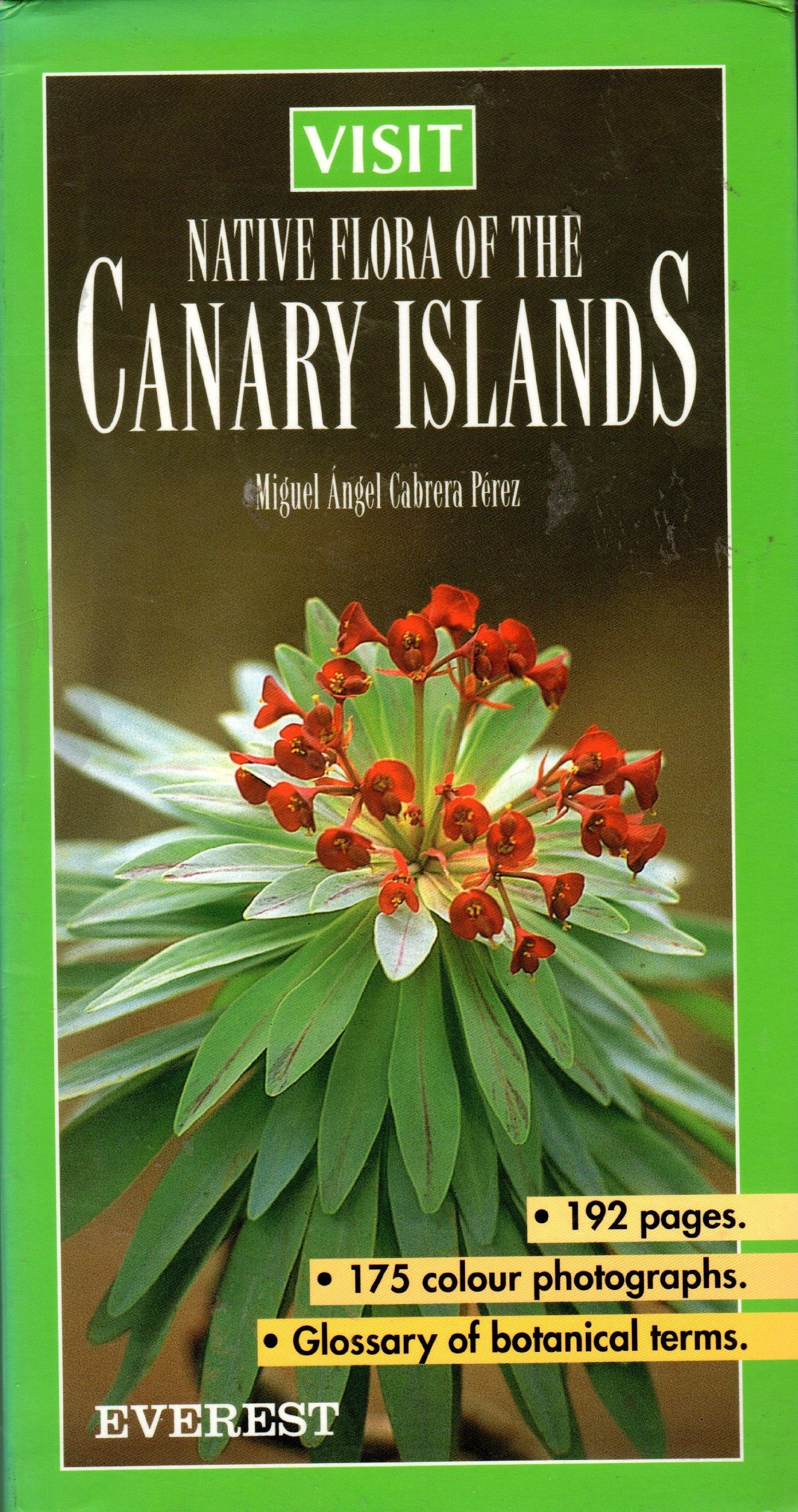 Native Flora of the Canary Islands pdf