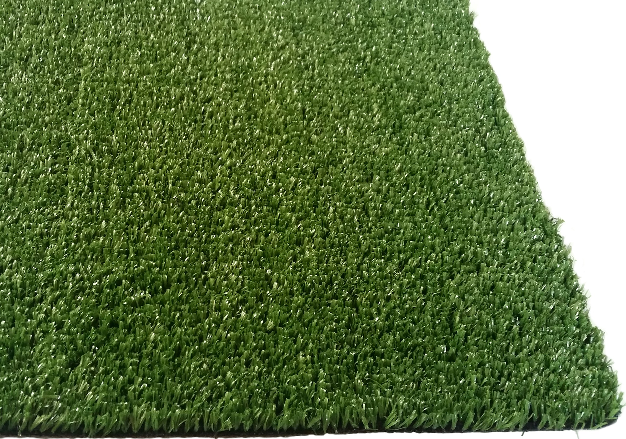 PZG Artificial Grass Rug w/ Drainage Holes & Rubber Backing | 2-Tone Realistic Synthetic Grass Mat | Extra-Heavy & Soft Pet Turf | Lead-Free Fake Grass for Dogs or Outdoor Decor | Size: 24' x 12'