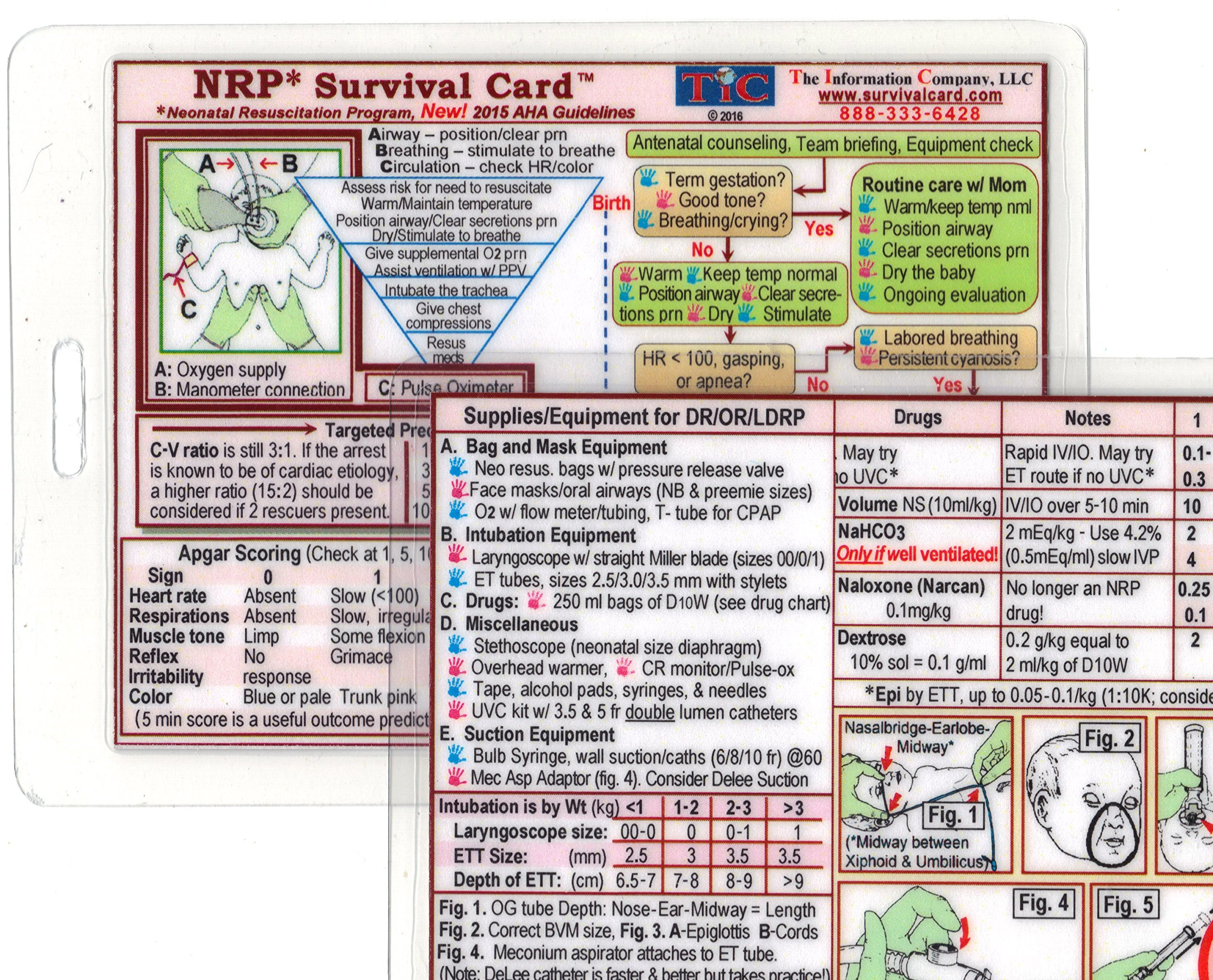 nrp neonatal resuscitation program survival card small 3x4 3 8 in rh amazon com Printable Survival Cards Business Card Survival Tool