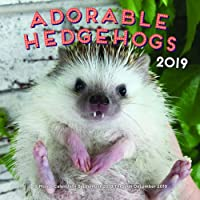 Adorable Hedgehogs 2019: 16-Month Calendar - September 2018 through December 2019 (Calendars 2019)