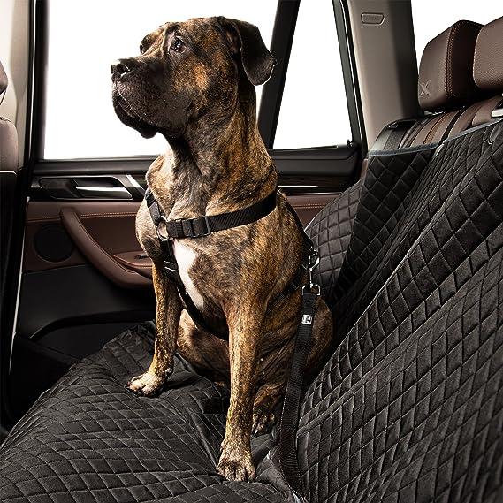 EVERANIMALS Cinturón De Seguridad para Perros | Correa Ajustable Y Resistente | Apta para Todos Los Coches | para Llevar A Tu Mascota En El Coche De Forma ...