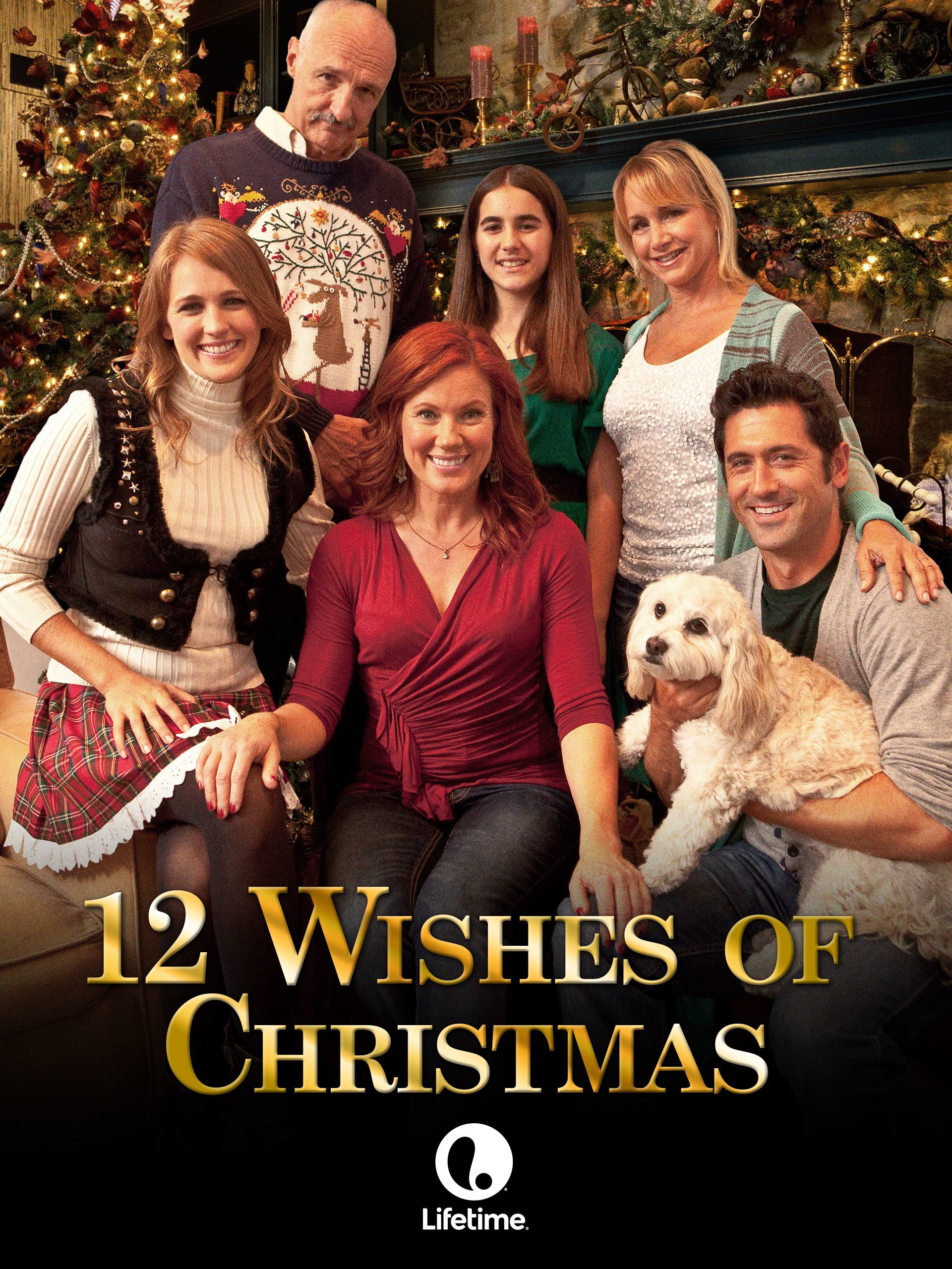 amazoncom 12 wishes of christmas hybrid llc - 12 Wishes Of Christmas