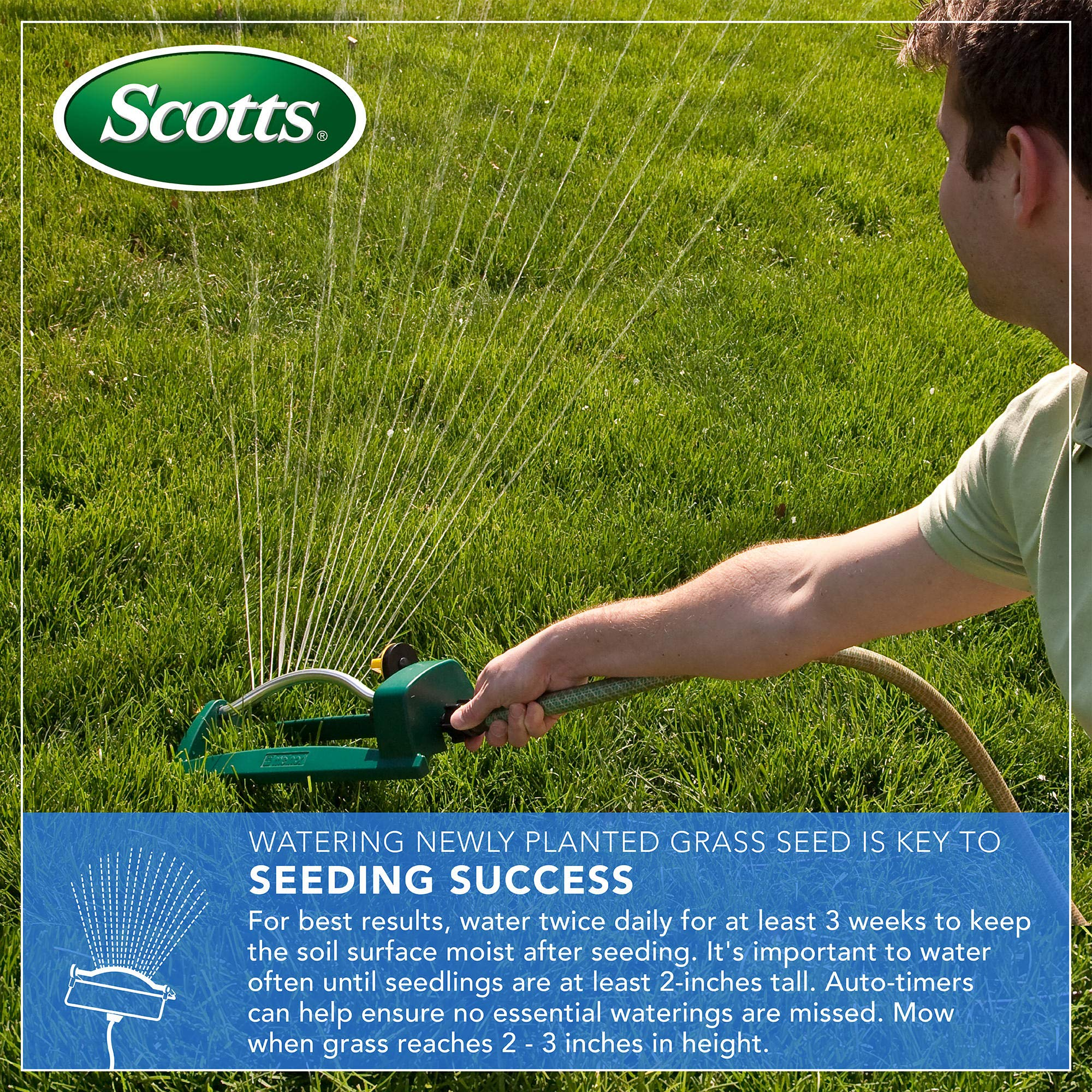 Scotts Turf Builder Grass Seed - Southern Gold Mix for Tall Fescue Lawns, 20-Pound (Sold in select Southern states) by Scotts (Image #4)