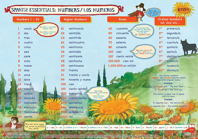 Éducatif Apprentissage Tapis: Espagnol Essentials - Numéro A4