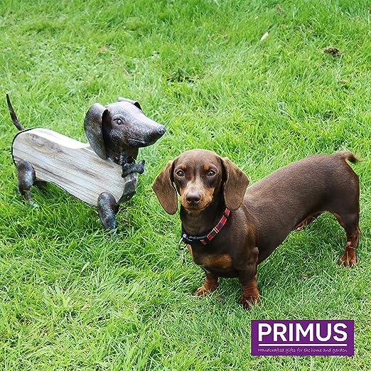 Adorno Primus® de madera rústica y metal hecho a mano para uso interior o exterior, Dog: Amazon.es: Jardín