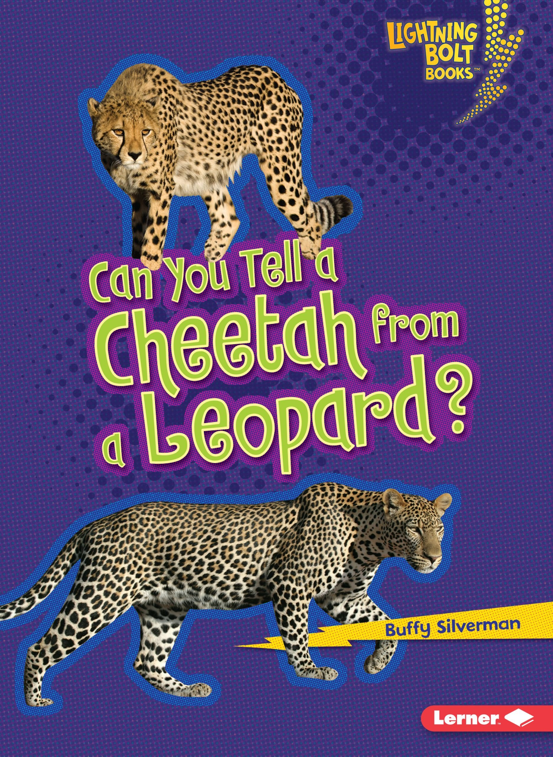 can-you-tell-a-cheetah-from-a-leopard-lightning-bolt-books