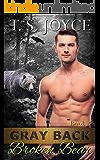 Gray Back Broken Bear (Gray Back Bears Book 4)