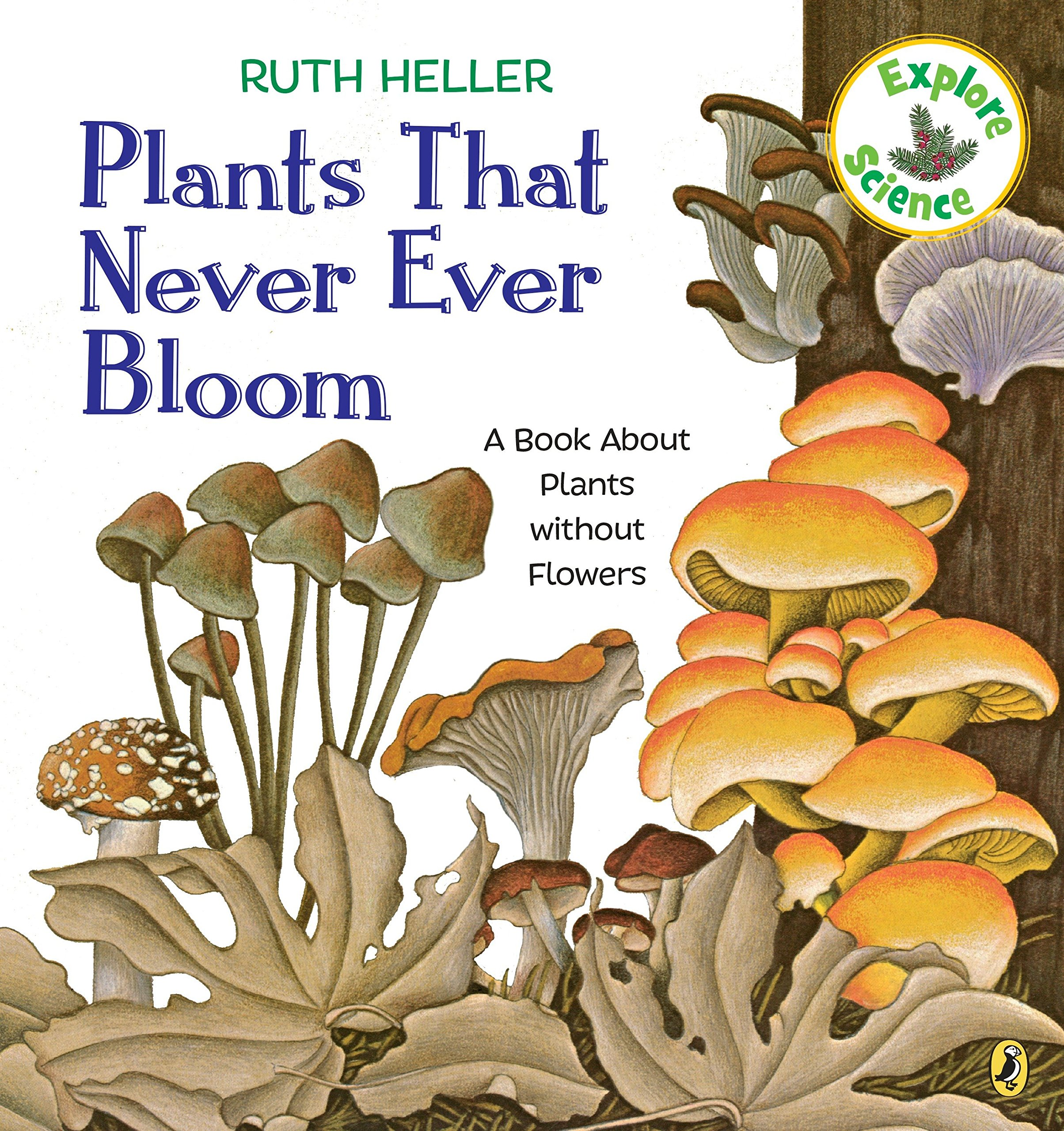 plants that never ever bloom a book about plants without flowers