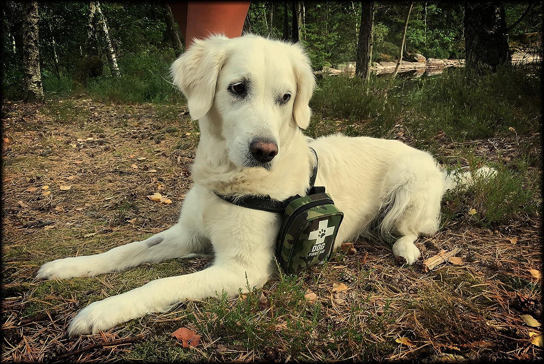 botiquines de primeros auxilios para perros