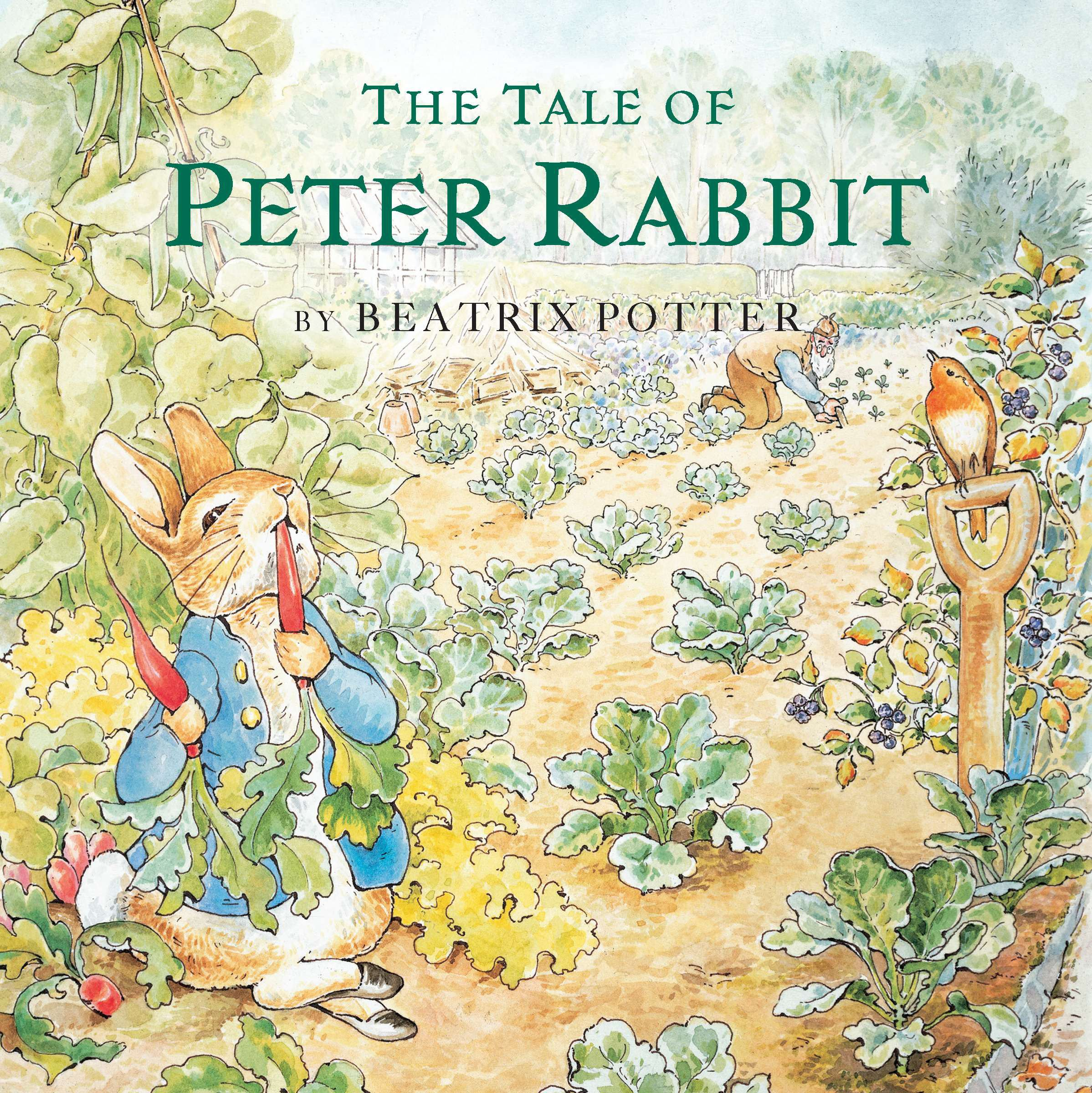 The Tale Of Peter Rabbit Beatrix Potter 9780448435213 Books