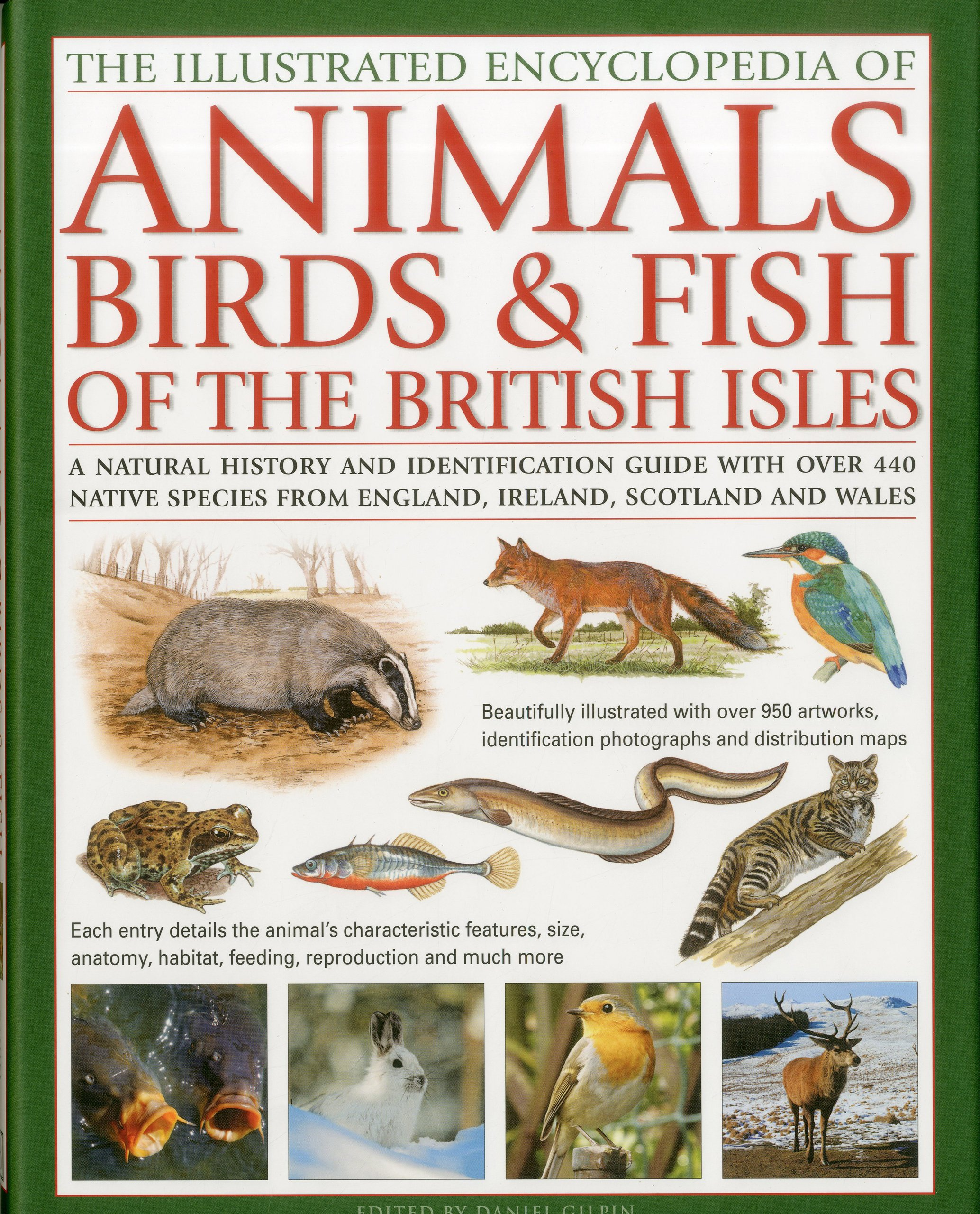 Freshwater fish england - The Illustrated Encyclopaedia Of Animals Birds And Fish Of British Isles A Natural History And Identification Guide To The Indigenous Wildlife Of And