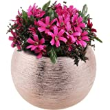7-Inch Round Modern Rose Gold-Tone Metallic Ceramic Plant Flower Planter Pot, Decorative Bowl Vase