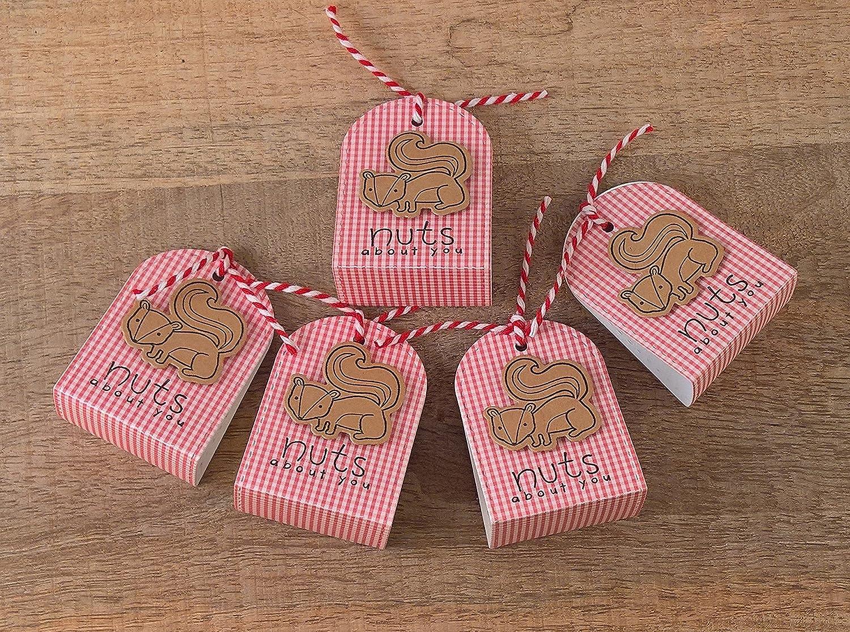 Amazon.com: Valentine Party Favor Boxes Set of 5, Squirrel Gift Wrap ...