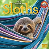 The Original Sloths Wall Calendar 2019