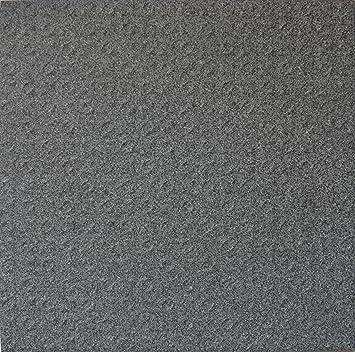 Bodenfliesen Feinkorn Anthrazit R Xxcm Kartonqm - Fliesen r12 v4