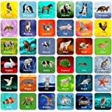 "Hebayy 36 Pair Animal Matching Game Flash Cards Erasable (Each Measures 2"" X 2"")"