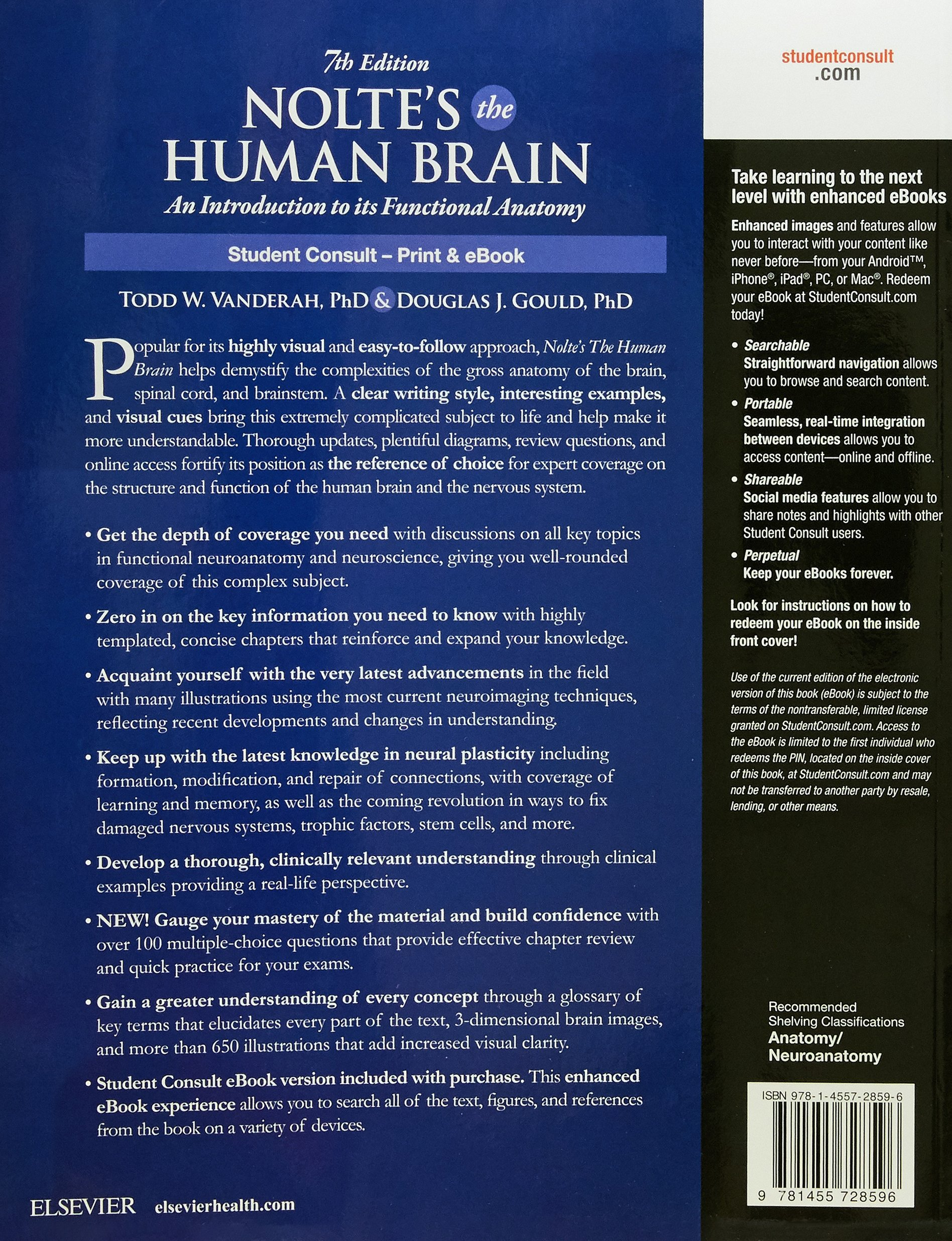 Buy Nolte\'s The Human Brain: An Introduction to its Functional ...