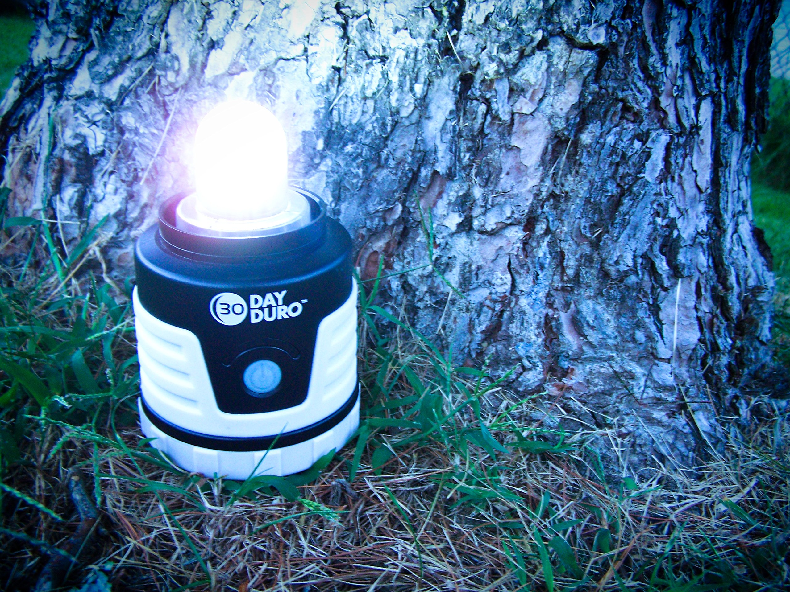 UST 30-DAY Duro LED Portable 700 Lumen Lantern with Lifetime LED Bulbs and Hook for Camping, Hiking, Emergency and Outdoor Survival by UST