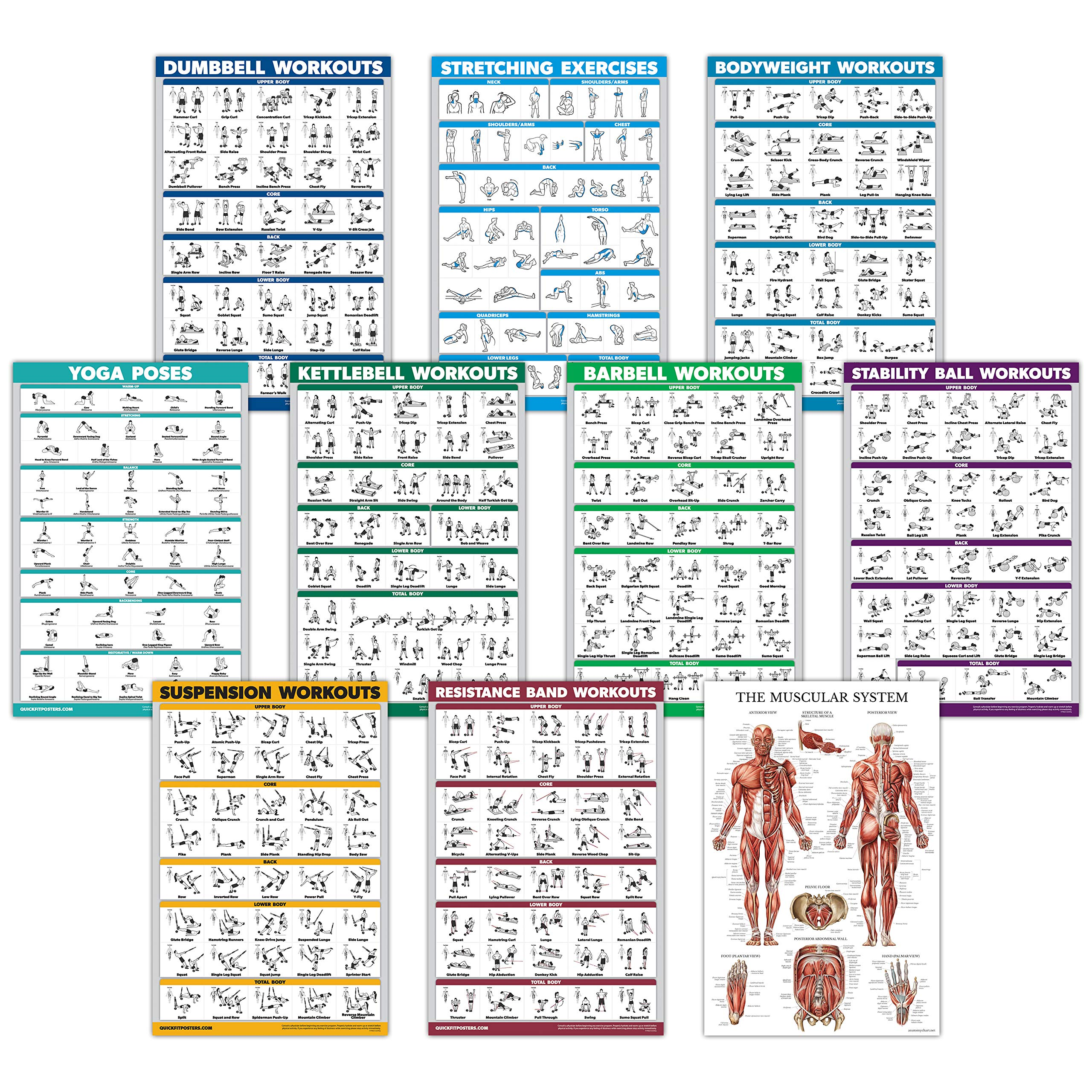 10 Pack - Exercise Workout Poster Set - Dumbbell, Suspension, Kettlebell, Resistance Bands, Stretching, Bodyweight, Barbell, Yoga Poses, Stability Ball, Muscular System Chart (LAMINATED, 18'' x 27'')