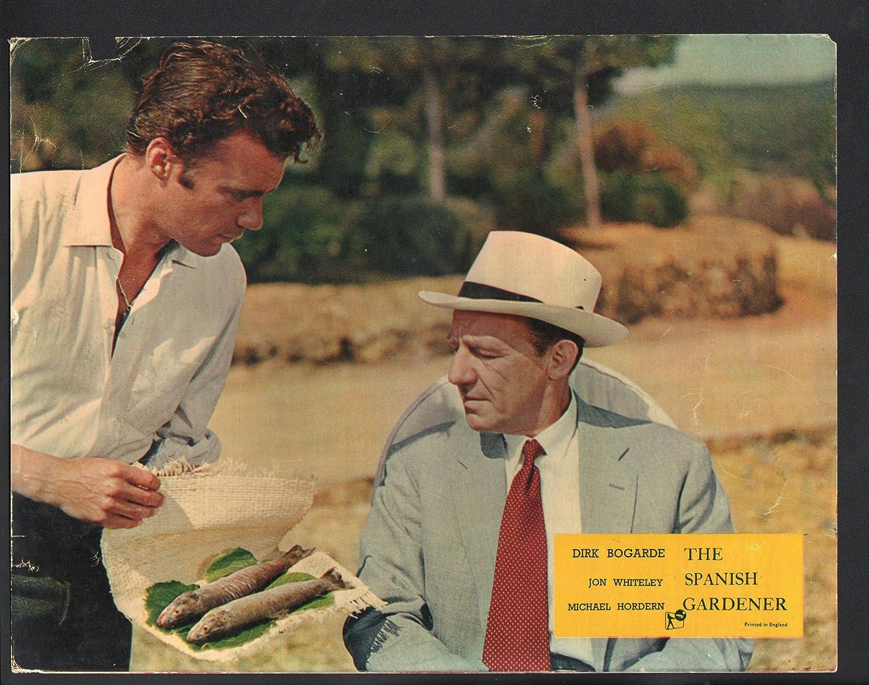 Amazon.com: MOVIE POSTER: Spanish Gardener Lobby Card-Michael Horden ...