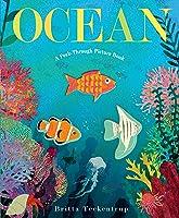Ocean: A Peek-Through Picture