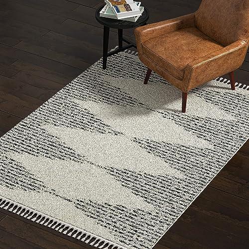 Amazon Brand Rivet Contemporary Traditional Area Rug