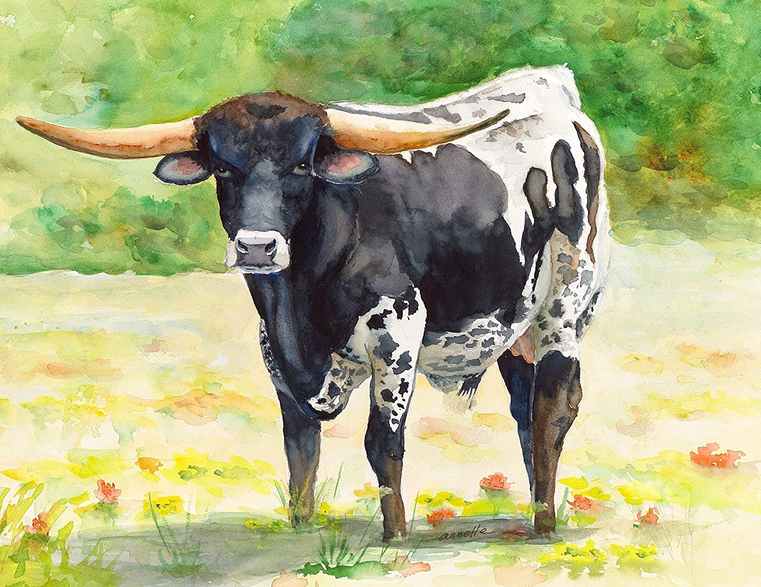 Amazon com texas longhorn black and white original watercolor