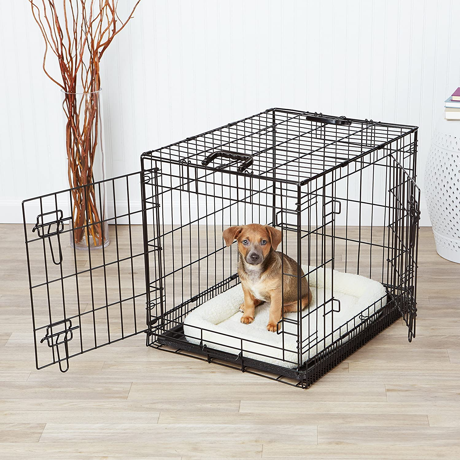 Dog Crates Your Dog Won't Mind