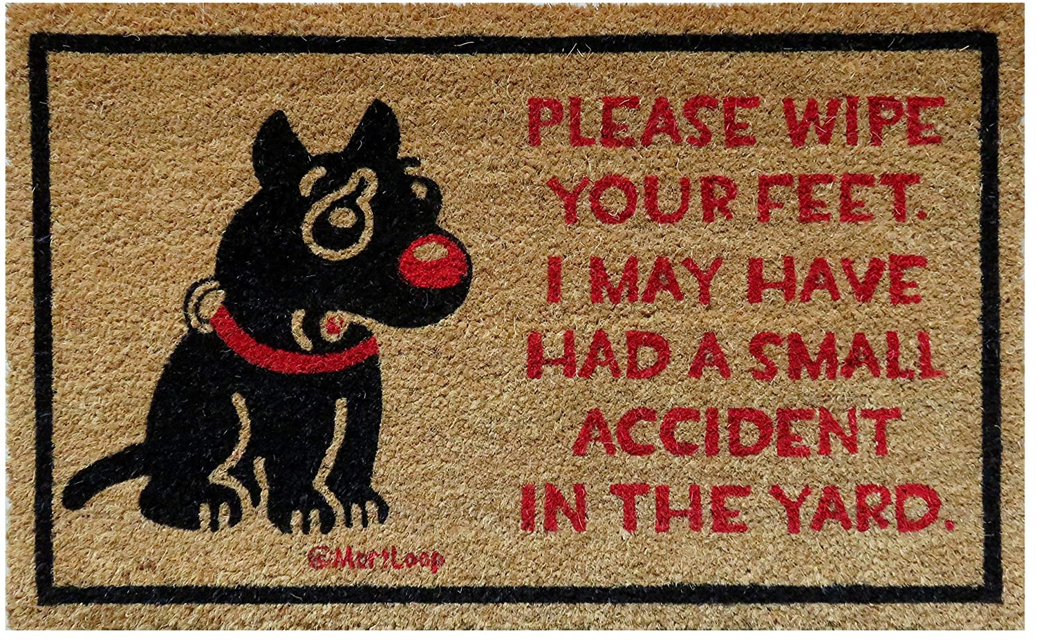 Amazon.com : Funny Outdoor Dog Welcome Mat Coir With a Humorous ...