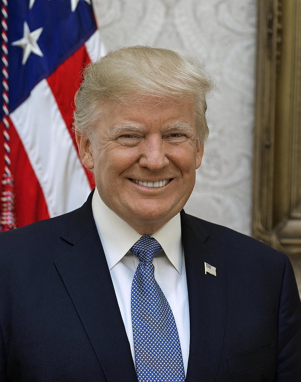 Donald J Trump Official Presidential Portrait Photo American Presidents Photos 8x10