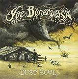 Dust Bowl [Vinyl LP]