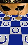 FANMATS NFL Indianapolis Colts Nylon Face Team