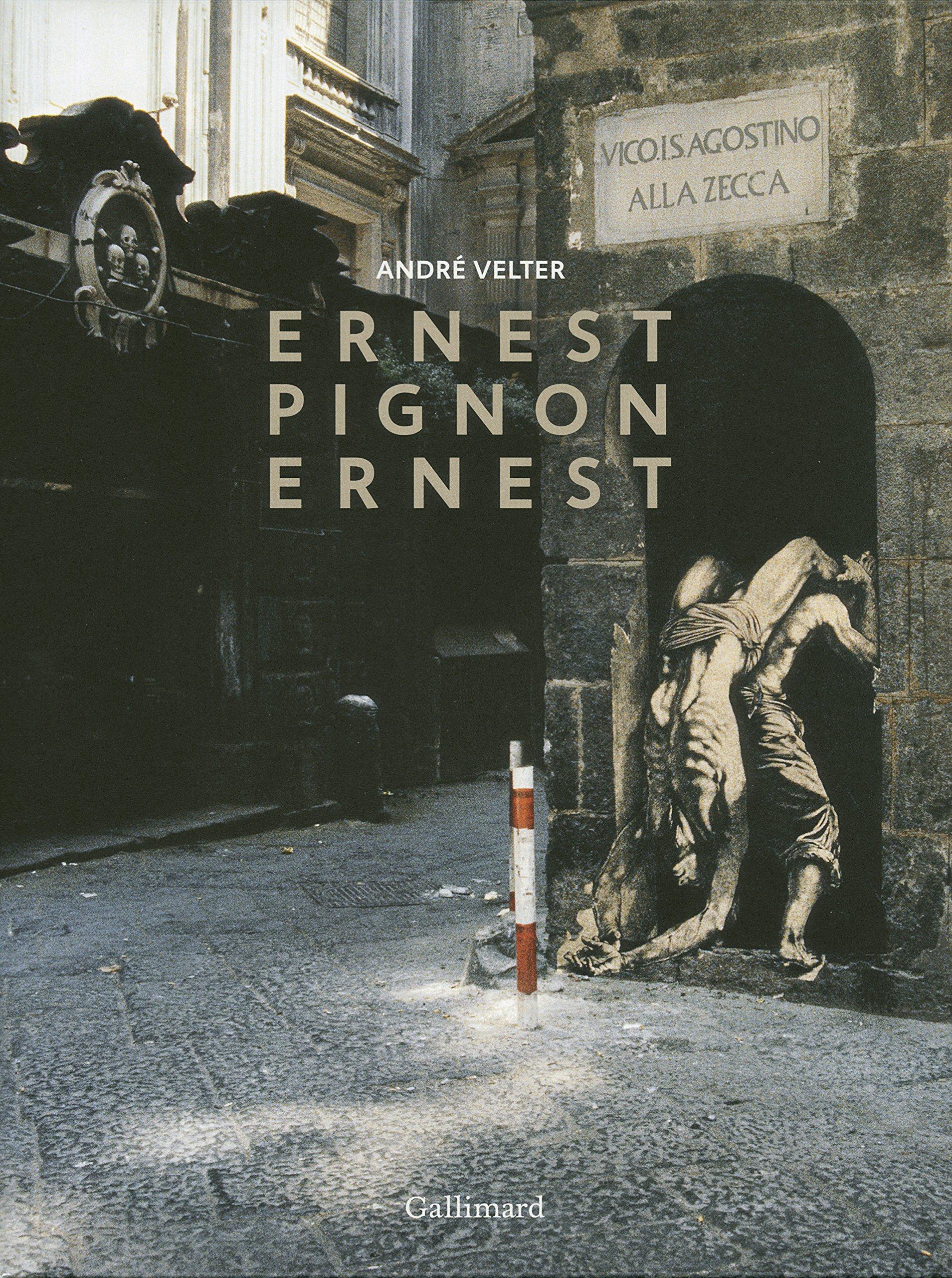 Ernest Pignon-Ernest Relié – 6 mars 2014 André Velter Gallimard 2070138313 Arts Et Beaux Livres