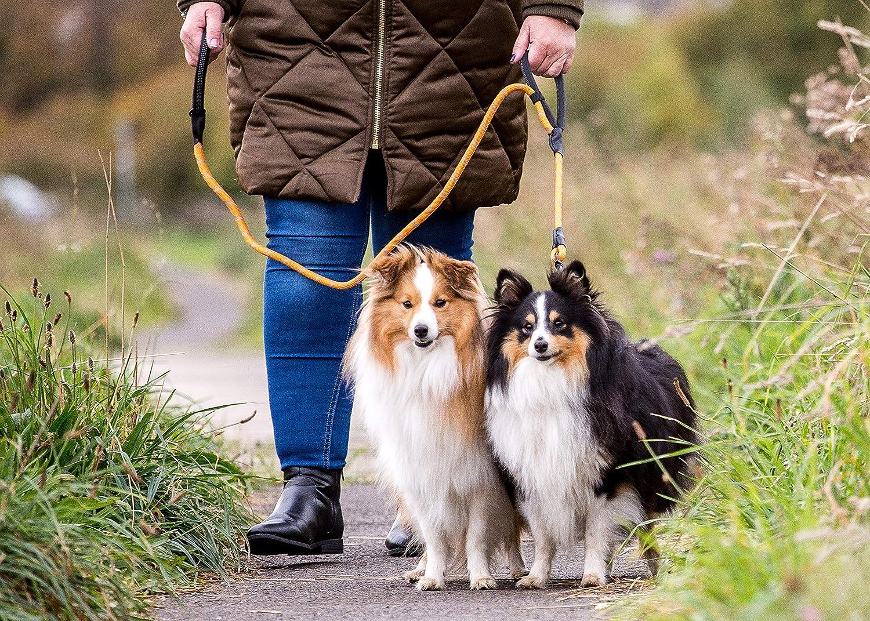 Nobby Classic Cani Formazione Guinzaglio