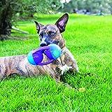 KONG Jumbler Disc Dog Toy, Medium/Large