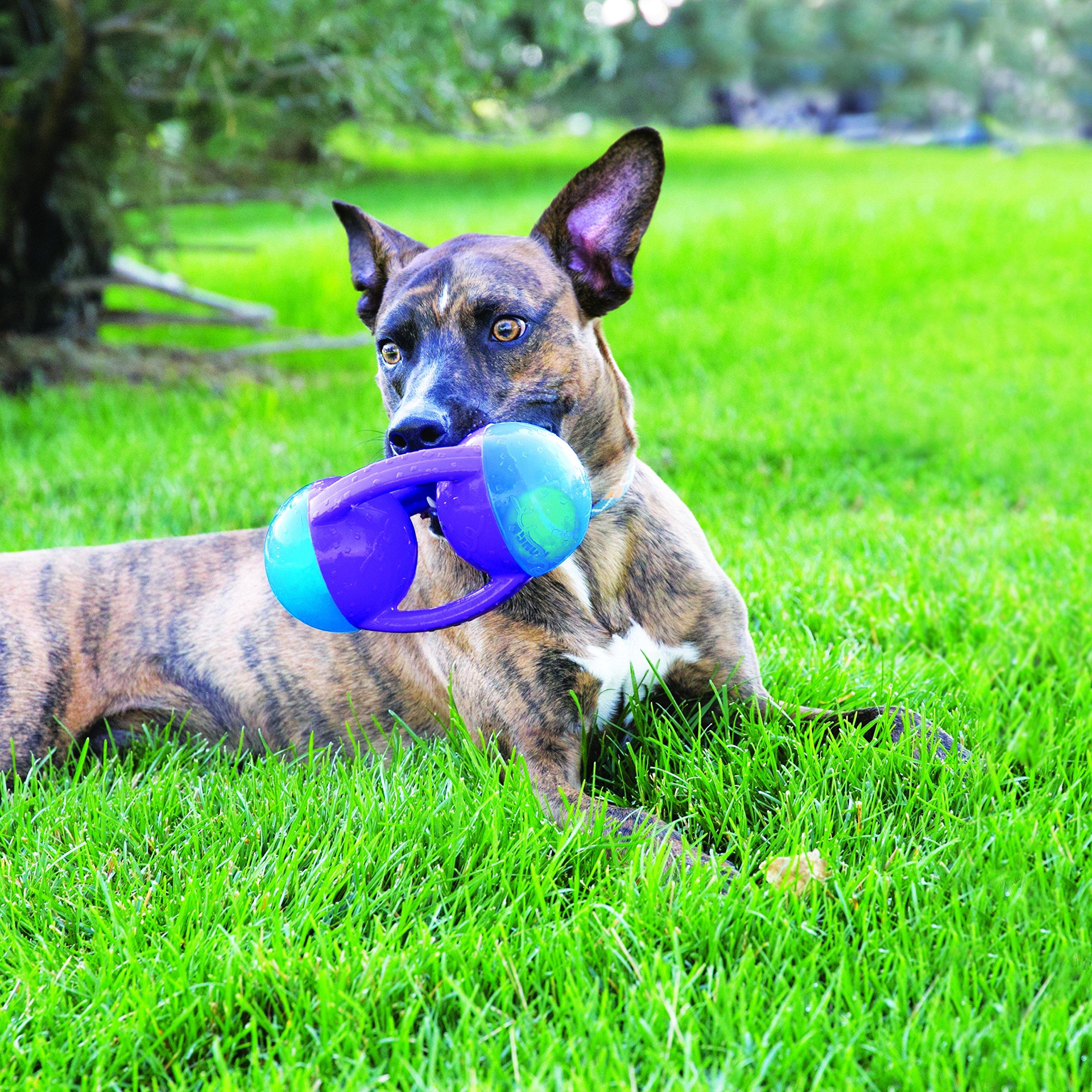 KONG Jumbler Disc Dog Toy, Medium/Large by KONG (Image #2)