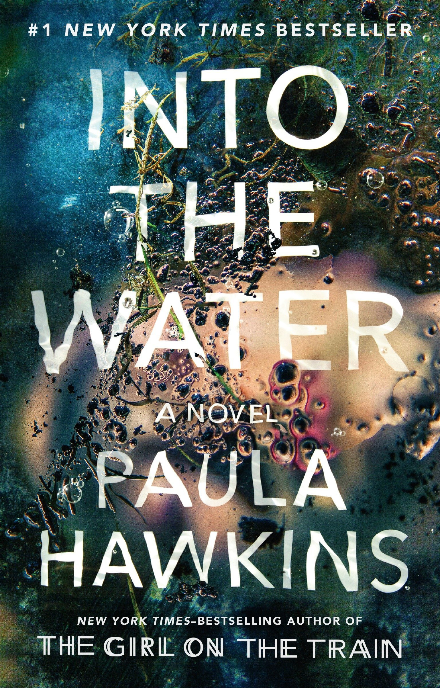 Read Online Into the Water: A Novel ebook