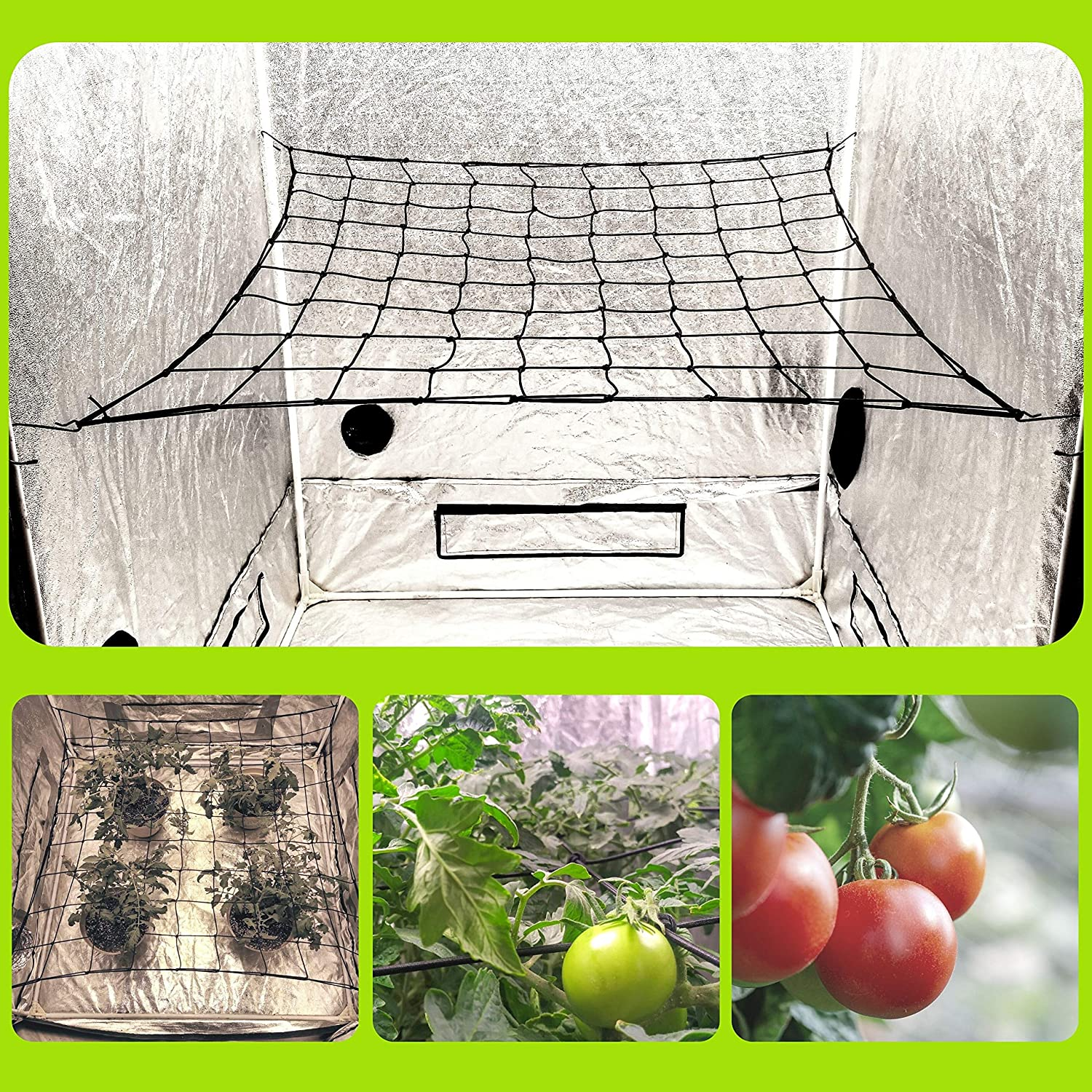 "Megaluxx Flexible Elastic Trellis Netting Grow Net - Grow Netting for 4x4 5x5 4x2 Grow Tents (Single 4"" Mesh Net)"