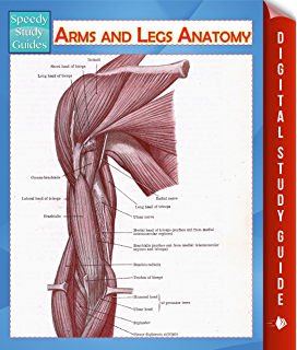 Arms And Legs Anatomy Speedy Study Guide Human Edition